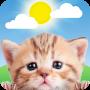 icon Weather Kitty