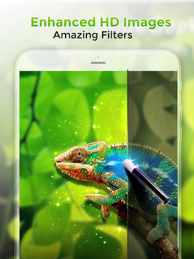 Kappboom - Coole achtergronden en Google Photos HD